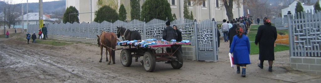 Humanitäres Hilfswerk CarElvetia
